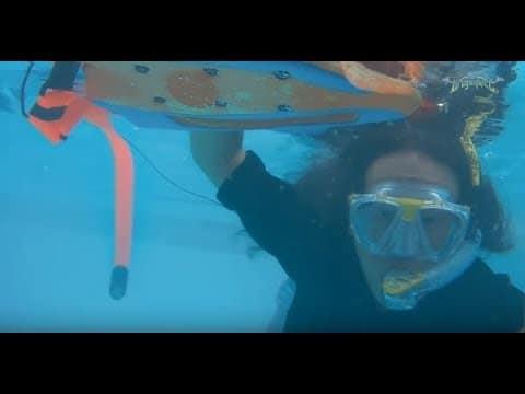 Mira al guitarrista Herman Li de Dragonforce tocar bajo el agua